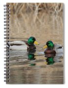 Mallards On The Pond Spiral Notebook