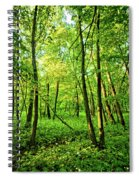 Mallory Woods Spiral Notebook