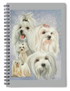 Maltese Collage Spiral Notebook