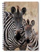Mama And Baby Zebra Spiral Notebook