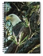 Mama Eagle  Spiral Notebook
