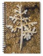 Mammoth Merry Christmas Spiral Notebook