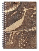 Man In Beak Spiral Notebook