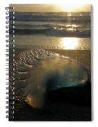Man-o-war In Sunrise Spiral Notebook