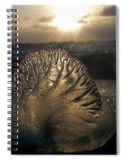 Man-o-war Sunrise II Spiral Notebook
