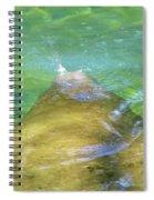 Manatee Exhale Spiral Notebook