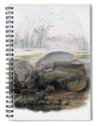 Manatees, Vulnerble Species Spiral Notebook