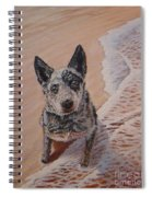 Mancha At The Beach Spiral Notebook