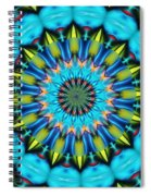 Mandala 111511 A Spiral Notebook