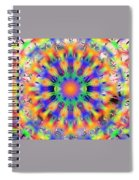 Mandala 4 Spiral Notebook