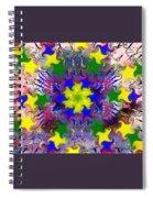 Mandala 6 Spiral Notebook