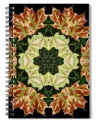 Mandala Autumn Star Spiral Notebook