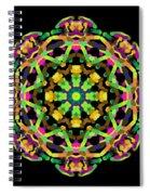 Mandala Image #14 Created On 2.26.2018 Spiral Notebook
