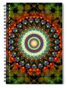 Mandala Of Loves Journey Spiral Notebook