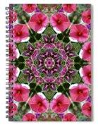 Mandala Pink Patron Spiral Notebook