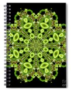 mandala - Revival-2201- 02gb Spiral Notebook
