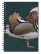 Mandarin Duck II Spiral Notebook