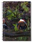 Mandarin Ducks Spiral Notebook
