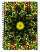 Mandella 6 Spiral Notebook