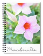 Mandevilla Pink Beauty Spiral Notebook
