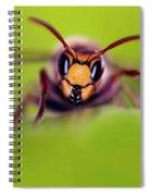 Mandibles Spiral Notebook