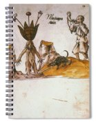 Mandrake, C1500 Spiral Notebook