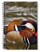 Mandrin Duck Posing Spiral Notebook