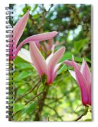 Mangolia Tree Flowers Art Prints Pink Magnolias Baslee Troutman Spiral Notebook