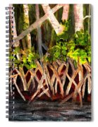 Mangrove At Gumbo Limbo Spiral Notebook