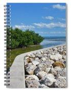 Mangroves Rocks And Ocean Spiral Notebook