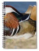Manny 2 Spiral Notebook