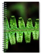 Manoa Fern Spiral Notebook
