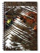 Manoa's Fallen Spiral Notebook