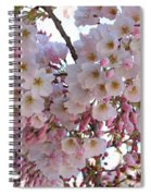 Many Pink Blossoms Spiral Notebook