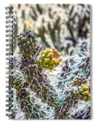 Many Stems Of Poky Small Cactus In Desert Spiral Notebook