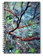 Manzanita Abstract Spiral Notebook