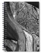 Manzanita Black And White Spiral Notebook