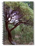 Manzanita Tree By The Road Spiral Notebook