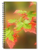 Maple Leaves Changing Spiral Notebook