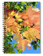 Maple Mania 1 Spiral Notebook