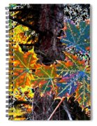 Maple Mania 14 Spiral Notebook