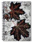 Maple Mania 17 Spiral Notebook