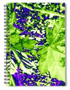 Maple Mania 19 Spiral Notebook