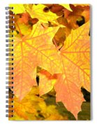 Maple Mania 2 Spiral Notebook