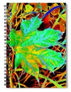Maple Mania 21 Spiral Notebook