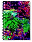 Maple Mania 23 Spiral Notebook