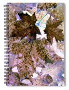 Maple Mania 25 Spiral Notebook