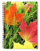 Maple Mania 5 Spiral Notebook