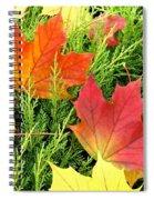 Maple Mania 5 Spiral Notebook