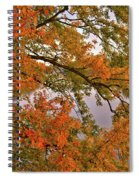Maple Over The River Spiral Notebook